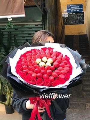 hoa hồng dâu tây SOCOLA D042