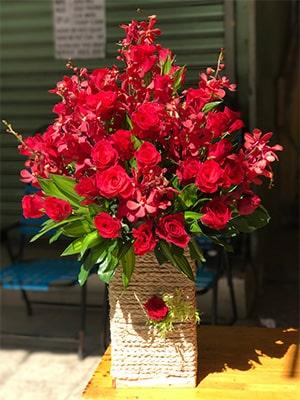 Hộp hoa hồng đỏ HHĐ008