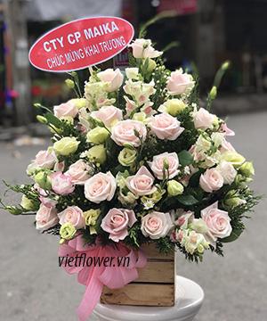 Hộp hoa hồng VFH008